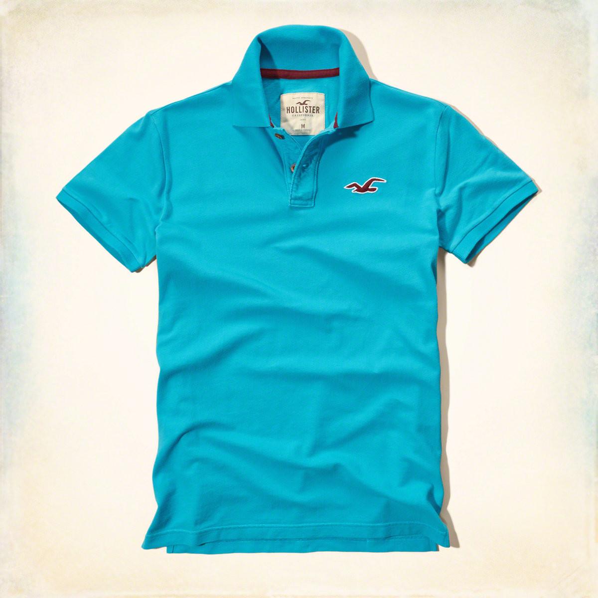 Мужская футболка поло Hollister цвет  синий арт  8787 купить в ... 350bfa9601b